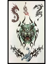 "Tattoo  "" Tigre et Dragons..."
