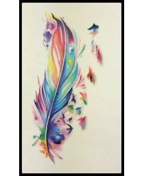 "Tattoo "" Plume Arc en ciel"""