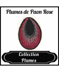 Patch Plume de Paon Rose